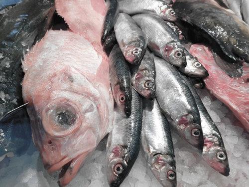 Meeresfrüchte Kochkurse bei Orientalisch Kochen in Wentorf